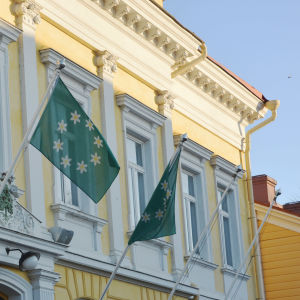 Gröna flaggor med vitsippor vajar utanför ett gammalt gult stadshus.
