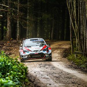 Sebastien Ogier kör på en smal väg.