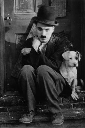 Charlie Chaplin elokuvassa Koiranelämää