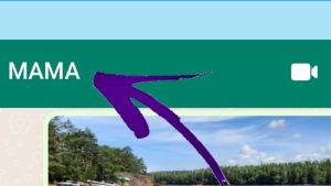 Kuvakaappaus WhatsAppista: Yksilöllisen viestiäänen laitto Androidiin.
