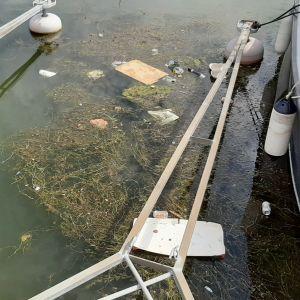 Skräp flytande i vatten i en båthamn.