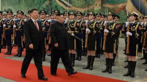 Xi Jinping och Kim Jong-Un går på röda mattan.
