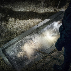 Ett nedfryst kvinnligt offer i tv-serien Sorjonen.