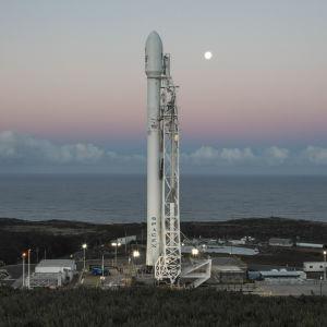 En Falcon 9-raket från företaget Space X.