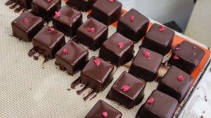 Fyrkantiga chokladkonfekter som just doppats i smält choklad. Ovanpå dem ligger små röda blomblad.