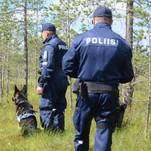 Kaksi poliisia ja poliisikoira seisovat suon laidalla.