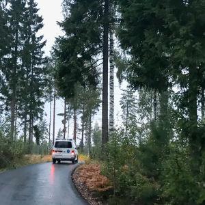 polisbil på skogsväg