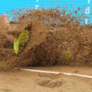 sand och spiksko