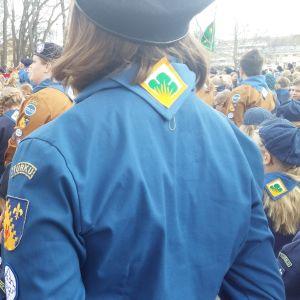 Scouter i olika färgers scoutriggar och baskrar står utanför Åbo Domkyrka inför scoutparaden.