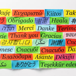 Lappar med ordet tack på många olika språk på en vägg.