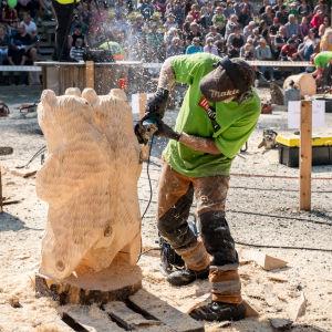 En man tillverkar en björn av en stubbe med hjälp av en motorsåg.