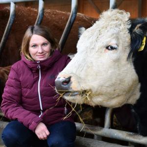 Jessica Aminoff sitter på huk vid några av gårdens biffkor som står och äter hö i sin ladugård.