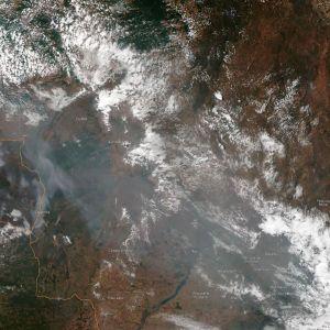 Nasas satellitbild av skogsbränderna i Amazonas.