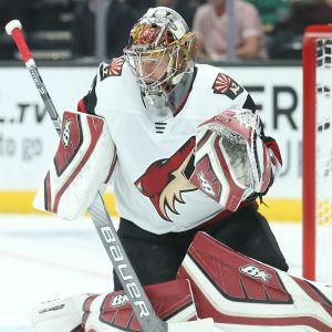 Antti Raanta har senast spelat NHL-hockey den 27 november.