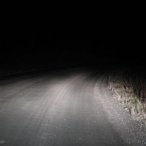 En grusväg som lyses upp av bilens ljus.