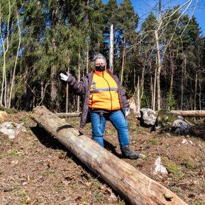 Jaana Öhman bland avverkade trädstammar.