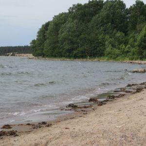 Sandstranden i Lappvik som hela tiden förlorar sand