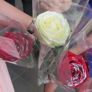 Röda och gula rosor till en student.
