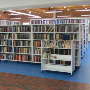 Vuxenböckerna i Ingås nya bibliotek finns där fullmäktige tidigare samlades i kommungården.