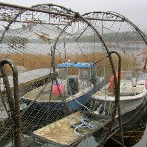ryssja och fiskebåtar