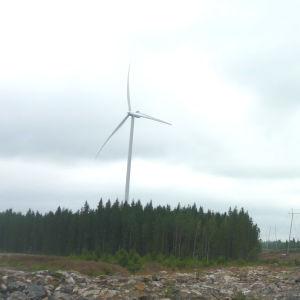 Vindkraftverk bredvid ett högspänningsnät.