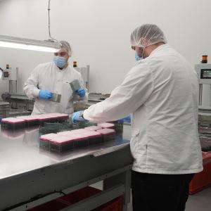 Työntekijöitä Thermo Fisher Scientificin tehtaalla Joensuussa.