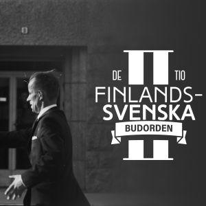De tio finlandssvenska budorden 2