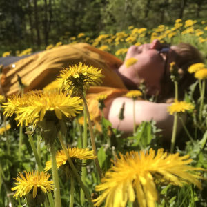 Nainen makaa voikukkaisella nurmikolla