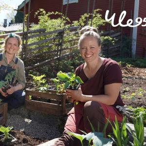 Kaksi naista, Lena Gillberg ja Elin Skagersten-Ström istuu Strömsön puutarhassa.