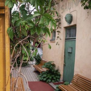 Keltainen aita etualalla, takana vanha rakennus, jonka seinässä lukee 'Sauna'.