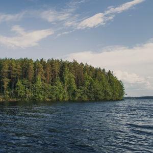 Aittosaari sijaitsee Keski-Suomessa Viitasaarella.