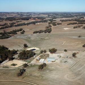 Spannmålsodling i västra Australien