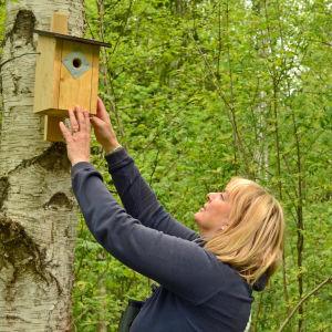 Carola Juselius rättar till en fågeholk.
