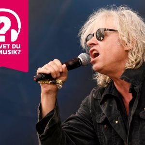 Bob Geldof bär solglasögon och sjunger i en mikrofon som han håller i handen.
