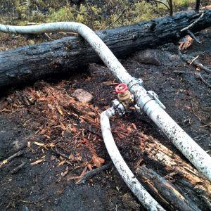 En vattenslang ligger på marken, som är svedd av eld efter en markbrand.