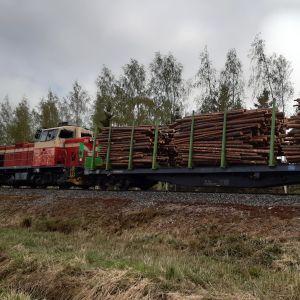Juna kuljettaa puulastia Suupohjan radalla Seinäjoella.