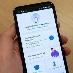 En närbild på en mobiltelefon och appen Coronablinkern.