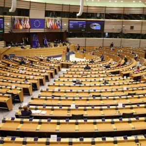 EU-parlamentin istuntosali. Vain muutamalla harvalla paikalla istuu edustajia.