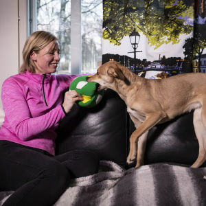En kvinna sitter i en soffa och leker med en hund.
