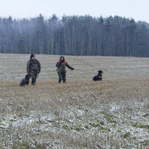 Metsällä olevat mies ja nainen metsästyskoirien kanssa talvisessa peltomaisemassa.