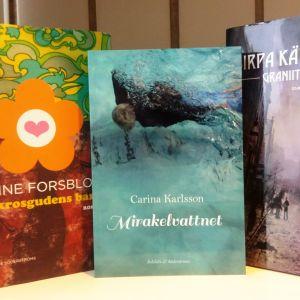 Sabine Forsblom, Carina Karlsson och Sirpa Kähkönen kandidater till Nordiska rådets litteraturpris 2016.