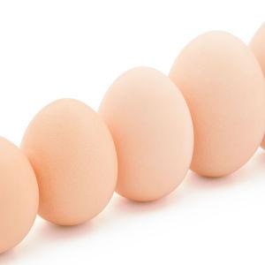 Ägg i olika storlekar.