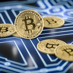 Några bitcoinmynt med något som liknar ett kretskort i bakgrunden.