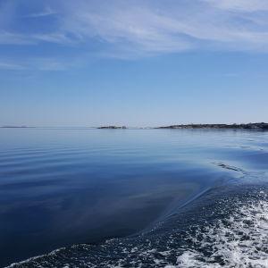 Svallvågor av en båt på havet i stiltje.