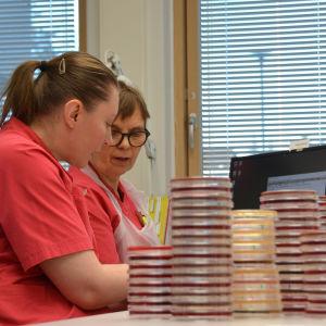 Kuvassa kaksi laboratoriotyöntekijää