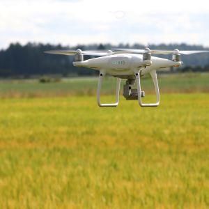Drooneja pellolla