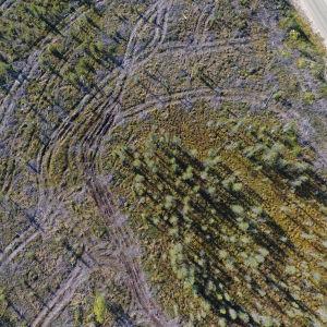Hakkuu Savukosken Ruuvaojalla ilmasta kuvattuna