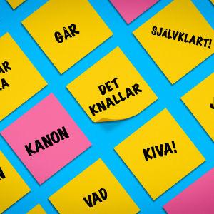 Post-it lappuja joilla on sanoja suomen- ja riikinruotsiksi.