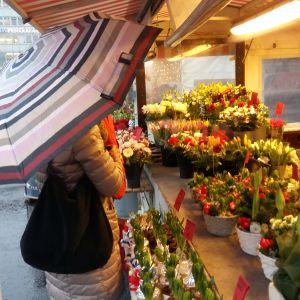 En dam med randigt paraply står vid en försäljningsvagn med julblommor på Salutorget i Åbo.