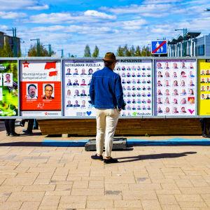 En man betraktar valaffischer i Torneå.